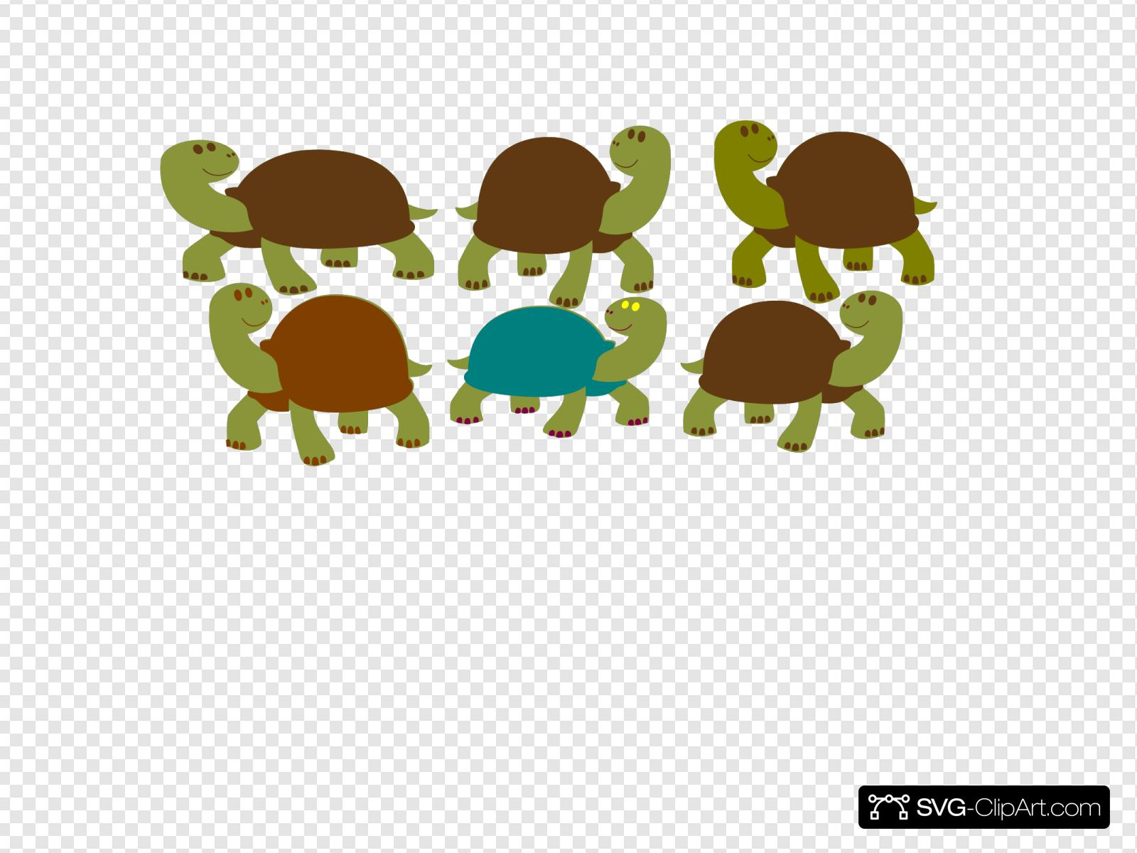 Group Of Turtles Svg Vector Group Of Turtles Clip Art Svg Clipart