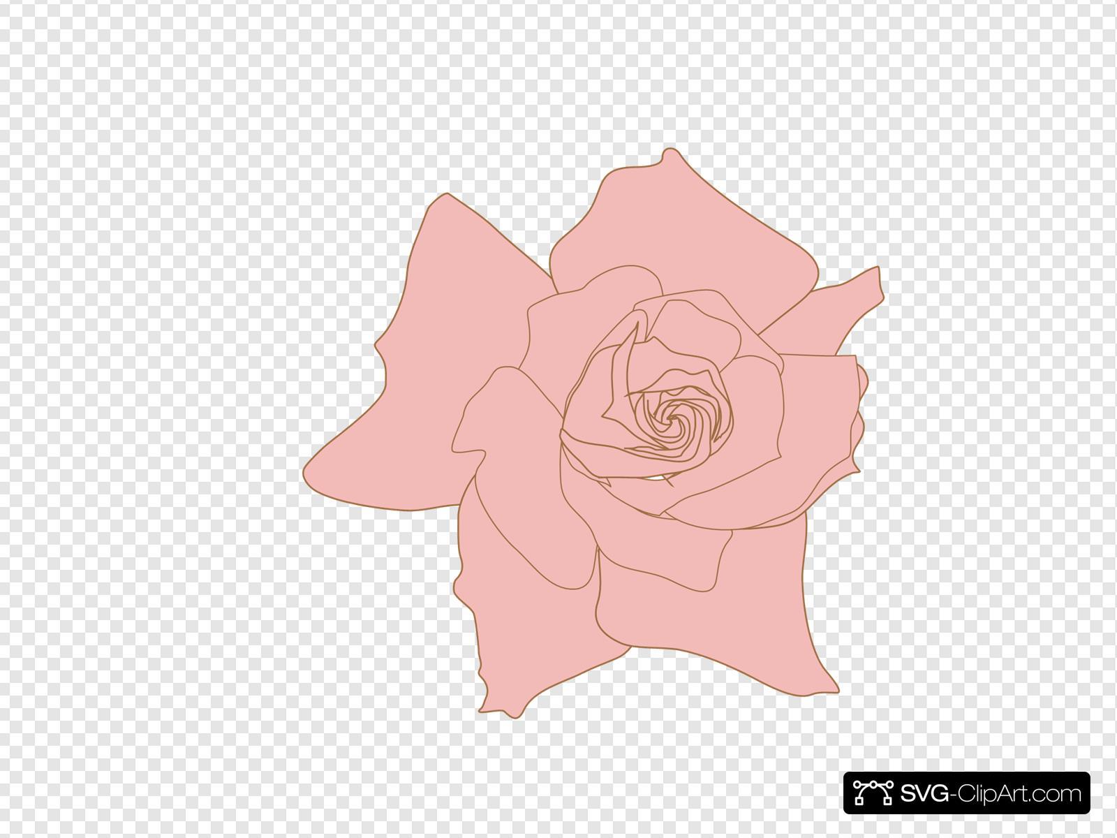 Castillian Rose Clipart Jpg Free Download Free Roses - Pink Rose Clipart,  HD Png Download - vhv