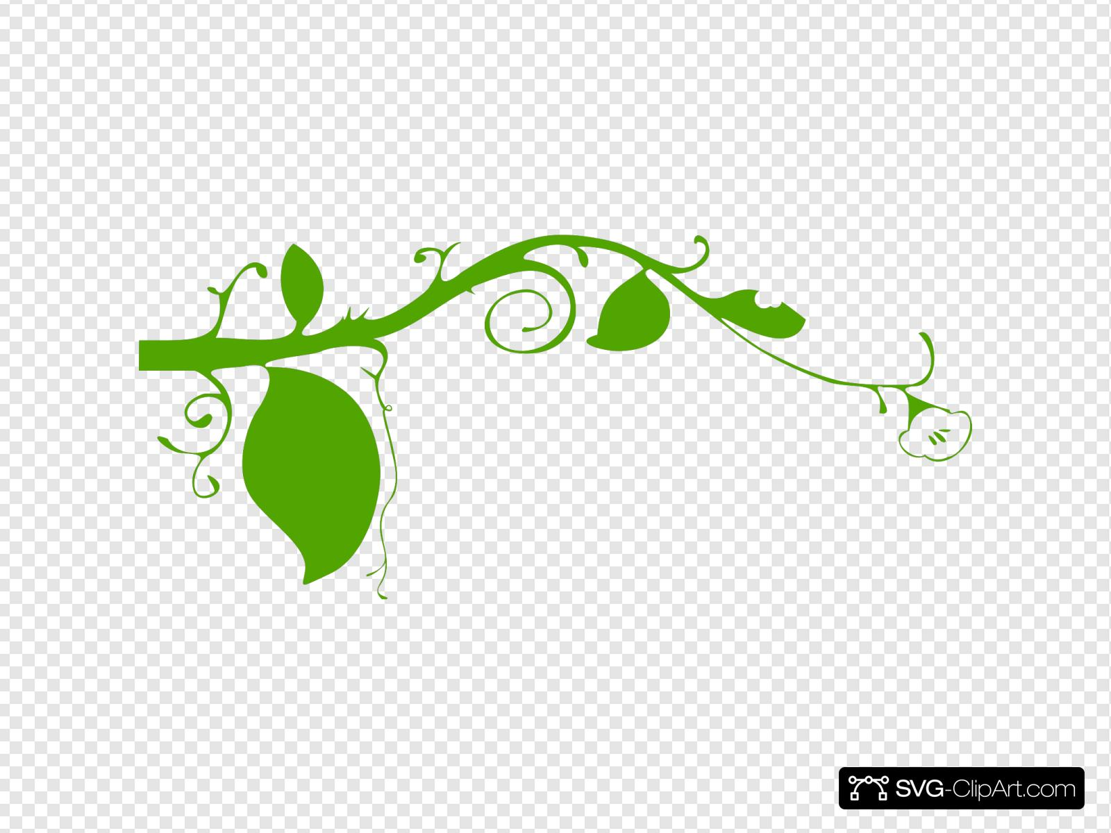 Black And White Flower, Shape, Iphone, Plant Stem, Leaf, Green, Flora,  Branch transparent background PNG clipart   HiClipart
