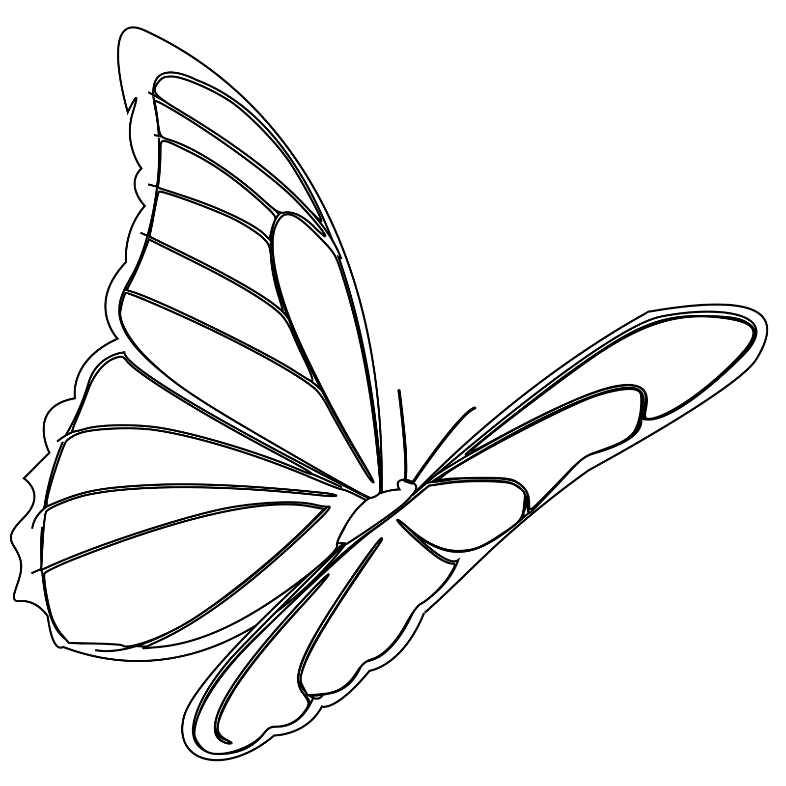Butterfly outline flying. Clip art icon and