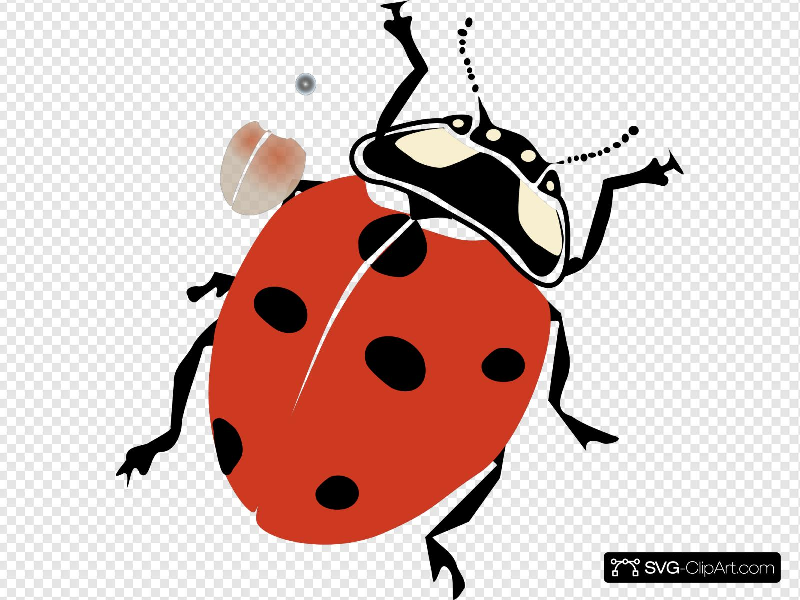 - Ladybug Clip Art, Icon And SVG - SVG Clipart