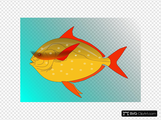 Fish 16 SVG Cliparts