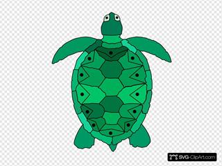 Teal Sea Turtle