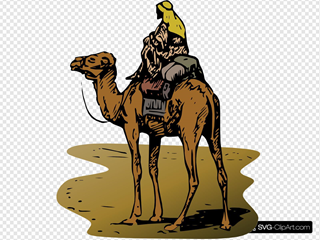 Camel With Rider In Color