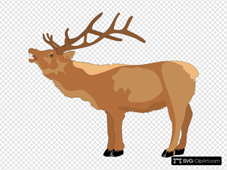 Reindeer Mooing