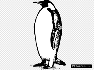 Penguin 4 SVG icons