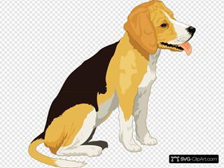 Yellow And Black Beagle