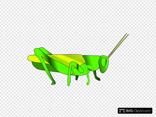 Grass Hopper SVG Cliparts