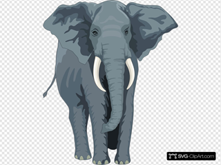 Walking Elephant Front View SVG Clipart