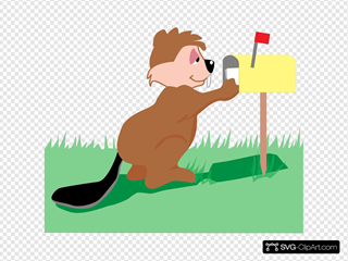 Beaver Getting Mail
