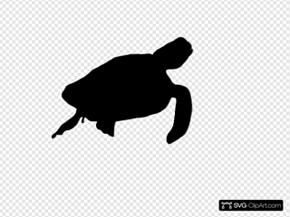 Sea Turttle Silhouette