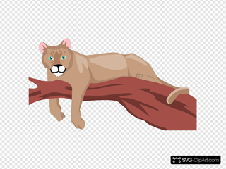Cougar On A Branch