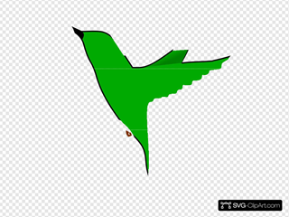Humming Bird Clipart