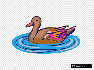 Brown And Pink Duck In Water