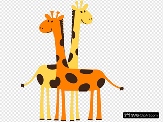 Two Giraffes Animals