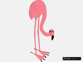 Flamino Bird Animal Eating SVG Clipart