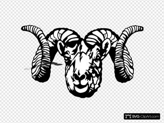 Tool Ram