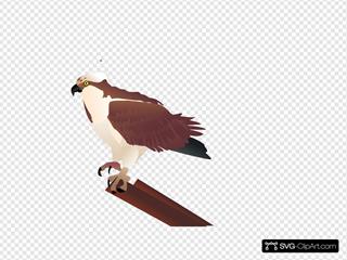 Osprey Standing On Branch SVG Clipart