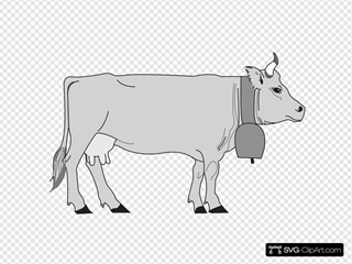 Gray Cow Side View
