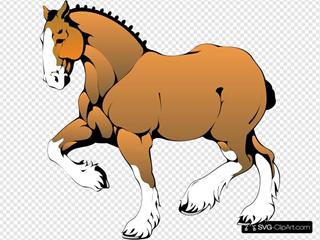 Muscular Horse