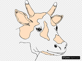 Light Colored Cow Head