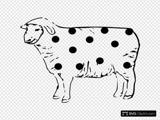 Spot Sheep