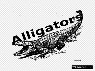 Alligator Sign 1