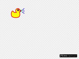 Int Duck