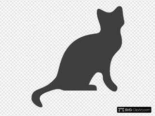 Darkgraycat