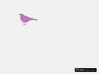 Pink Bird Silhouette 5 SVG icons