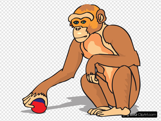 Chimp Playing With A Ball