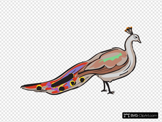Colorful Peacock SVG Clipart