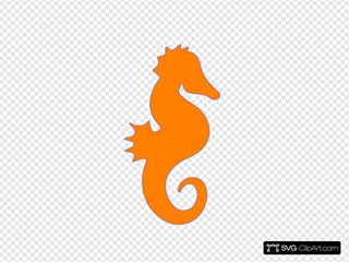 Seahorse Orange