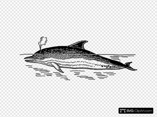 Snorting Dolphin SVG Clipart