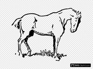 Small Eyed Horse
