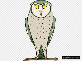 Staring Standing Owl