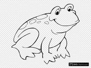 Frog 11