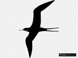 Frigate Bird SVG icons