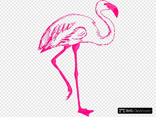 Pink Flamingo Outline