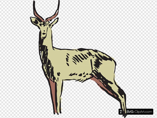 Green Antelope Drawing