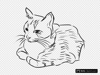 Cat Linedrawing