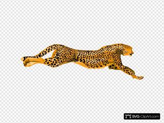 Ha Flosse Leopard Cheetah