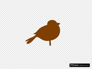 Brown Chubby Bird