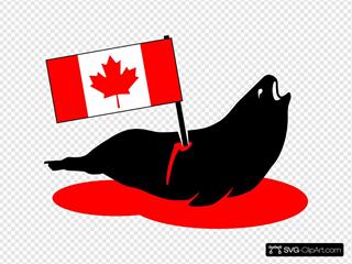 Canada Seal Hunting