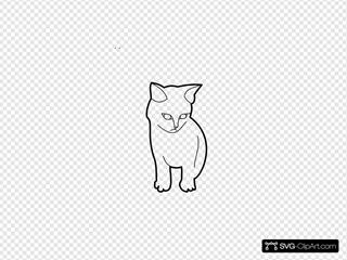 Cat Outloine Animal