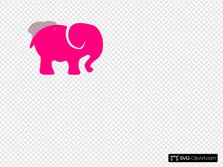 Pink On Pink Elephant