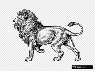 Lion SVG icons