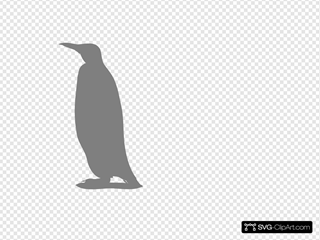 Penguin Shadow
