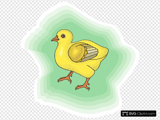 Baby Chick With Green Background