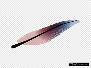 Colored Feather